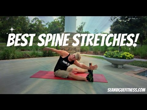 Beginner Spine Stretches - Basic Exercises to Stretch your Spine - Sean Vigue Fitness