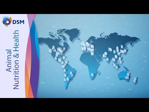 DSM Nutritional Products France - Processes And Development Of Vitamins, Carotenoids And Premixes