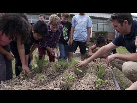 Lincoln Elementary School Garden Pick - May 2017