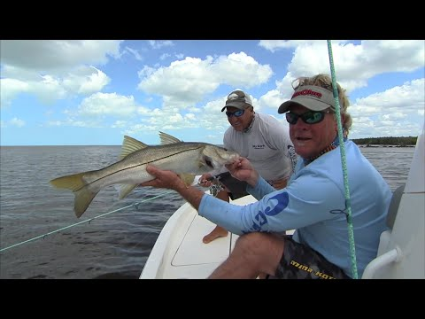 Fishing Videos in Florida Everglades Live Bait Tip for Big Snook
