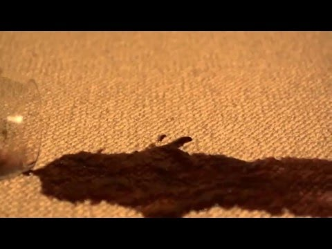 How to remove red wine from wool carpets   www FloorCareSpecialists co uk