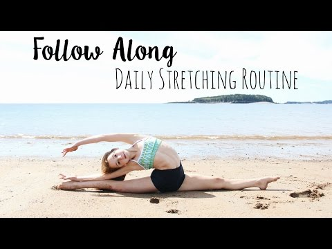 Daily Stretching Routine for Flexibility