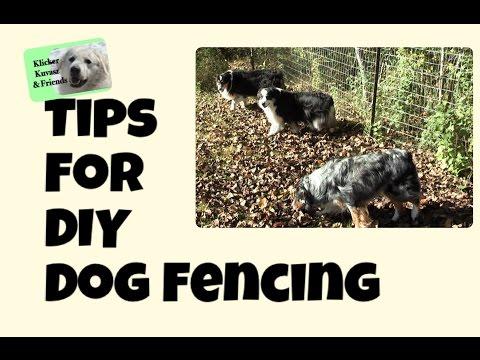 Tips For DIY Dog Fencing