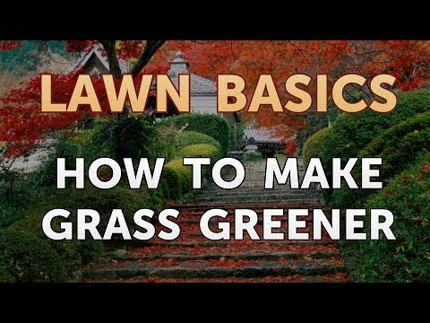 How to Make Grass Greener