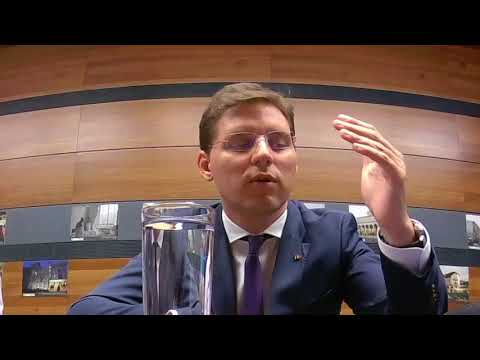 Victor Negrescu Cohesion strategy May 30 2018