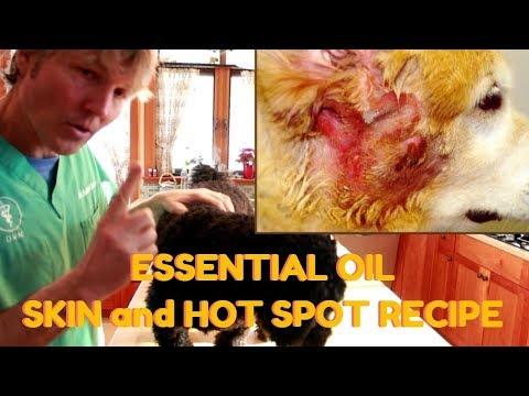 Dog Skin and Hot Spot Essential Oil Recipe