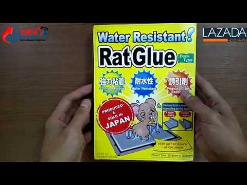SJFA Enterprises Rat Glue Trap (Water Resistant)