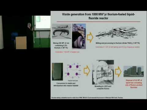 Energy From Thorium: A Nuclear Waste Burning Liquid Salt Thorium Reactor
