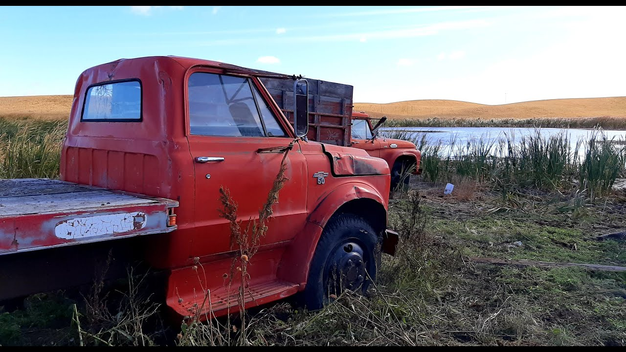 Will This Retired 1969 Chevrolet C50 Truck RUN AND DRIVE?