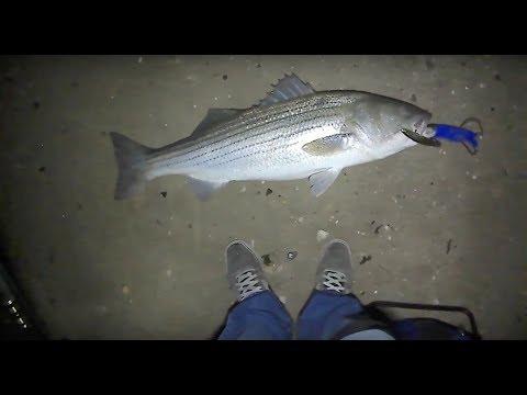 25lb Striped Bass!?! - Surfcasting at Night w/ Diawa SP Minnow - Fall Run 2017 - Long Island, NY