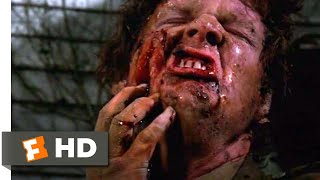 Download Pet Sematary (1989) - Dead is Better Scene (5/10) | Movieclips Video
