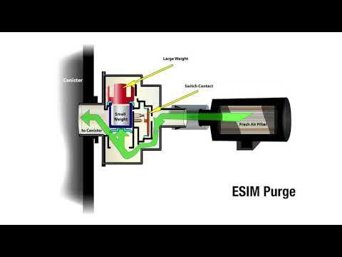 A Closer Look: Evaporative System Integrity Module (ESIM)