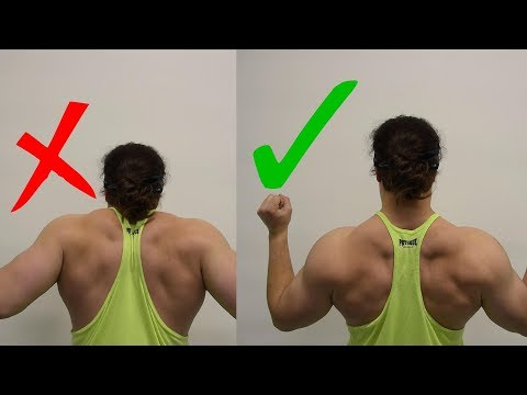 BUILD A BIGGER Back: Why Your Lats Aren't Growing