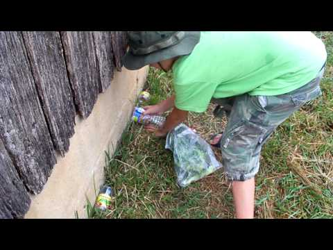 How to catch crickets with Frog Man Coby