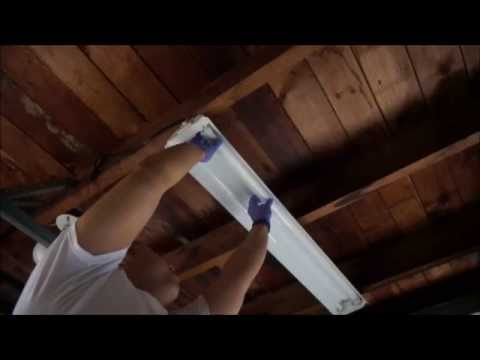 How TO / DIY - Changing replacing a Fluorescent Light Bulb