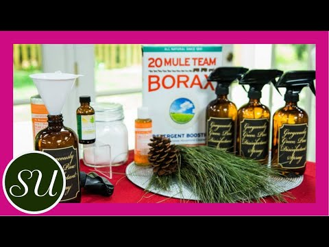Recipe: All Natural DIY Pine-Scented Cleaner