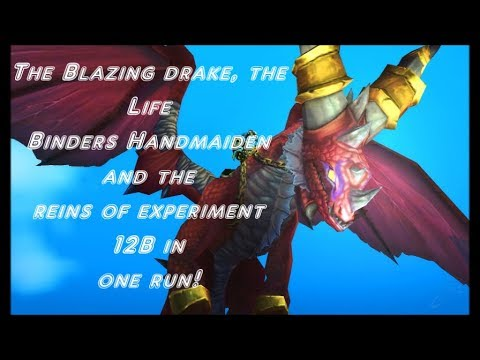 WOW how to get the Blazing drake, the Life Binders Handmaiden and the reins of experiment 12B
