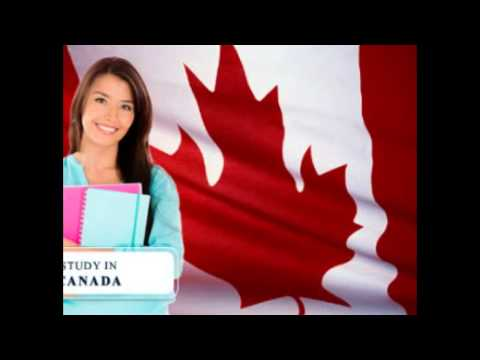 Study Visas Work Permits Immigration Job Consultancy Overseas Consultancy Shubhaoverseas.com