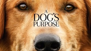 A Dog's Pupose - Tráiler Oficial