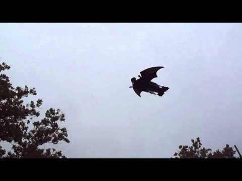Grim Reaper Halloween RC Plane. Front yard flying. Plans foamconceptjets.com