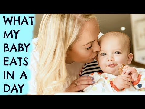 WHAT MY BABY EATS IN A DAY  |  BABY MEAL IDEAS  | STAGE 2 ad