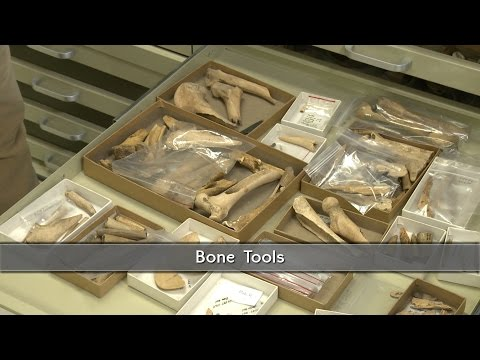 Bone Tools used by Virginia's First People