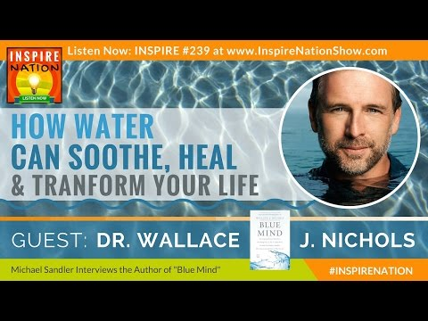 ★ WALLACE J NICHOLS: How Water Can Heal Soothe & Transform Your Life | Blue Mind | Blue Marbles