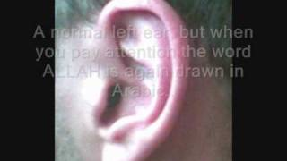 Creation signs of ALLAH in the human body