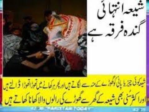 Xxx Mp4 Sheya Our Ghore Ka Story Shia Eat Horse Ghora Spit Thoouk Very Bad Kafir 3gp Sex