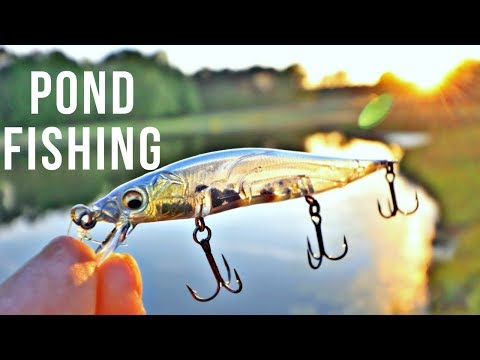 Exploring Private Bass Fishing Ponds In Alabama!