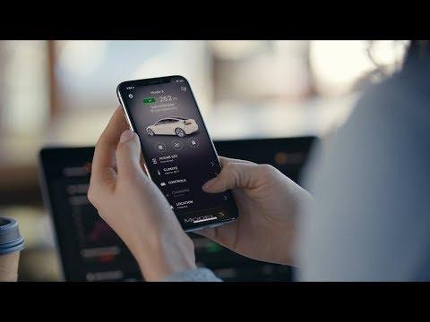 Model 3 Guide | Mobile App