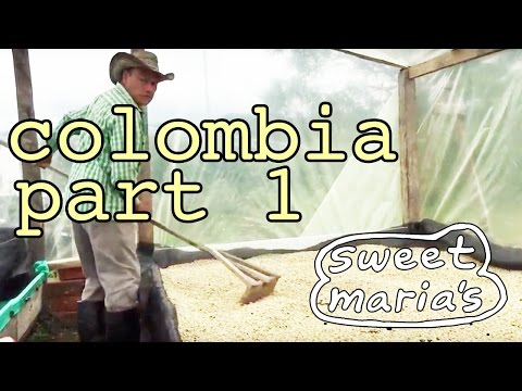 Video Travelogue: Colombia Farm Visits 2016 - PART 1
