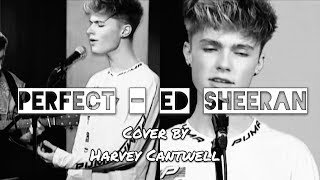 Perfect - Ed Sheeran Cover | Harvey Cantwell