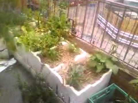Garden 1 - styrofoam balcony boxes