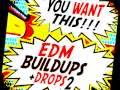 You Want This!  EDM Buildups & Drops 2  |  Inspired by Tomorrowland's main artists.
