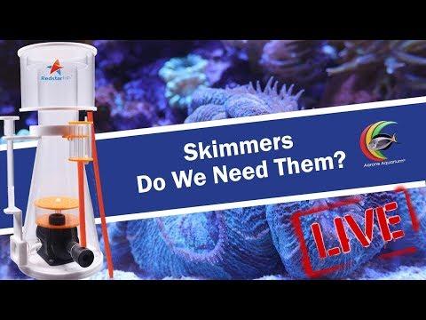 Skimmers, Do We Need Them? Aarons Aquarium Sunday Live Stream