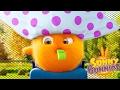 Dibujos animados para niños | Sunny Bunnies EL ÁRBOL | Dibujos divertidos para niños