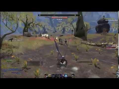 Elder Scrolls Online: Rampant Bot Usage