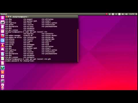 Ubuntu 15.04 - How to Install and Run Vim