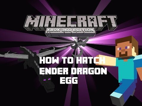 Minecraft How To: Hatch Ender Dragon egg
