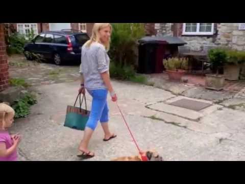 How to make walking the dog easier for a busy mum