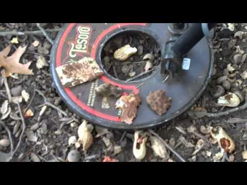 Metal Detecting with OldCoon #11