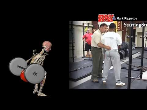 Muscle&Motion and Mark Rippetoe - How to Low Bar Squat & New Content