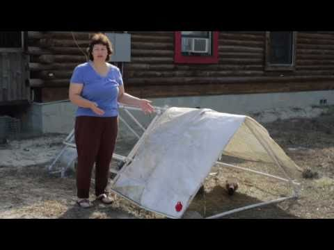 Triangle Chicken Coop Video Tour