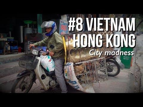 SCOOTER CHAOS, ZONDER VERKEERSREGELS | #8 Backpacken in Vietnam (Hanoi, Halong Bay) & Hong Kong 2017