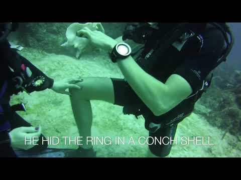 This Underwater Proposal is the Sweetest Thing You'll See Today