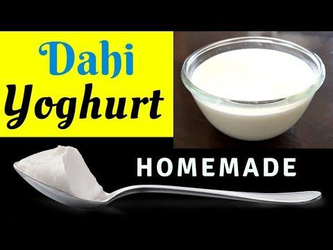 How To Make Dahi I How to make Curd I Yoghurt recipe I Thick and Creamy Dahi recipe