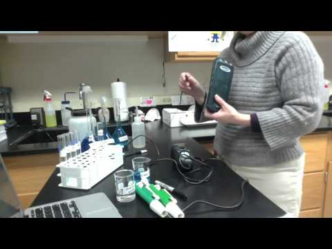 HChem - Lab - Determining the Concentration of a Solution:  Beer's Law
