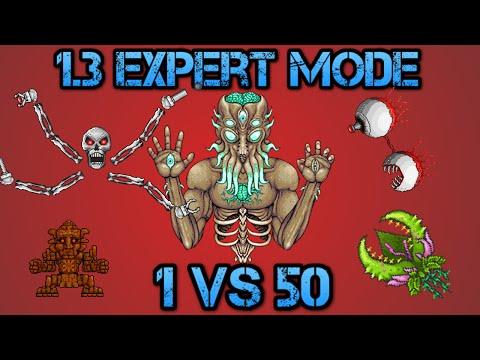 Terraria 1.3 Expert Mode  | 1 vs 50 Moon Lord, Enraged Plantera, Twins, Golems, Skeletron Prime