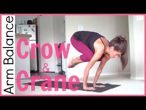 How to Crow Pose & Crane Pose | Arm Balance